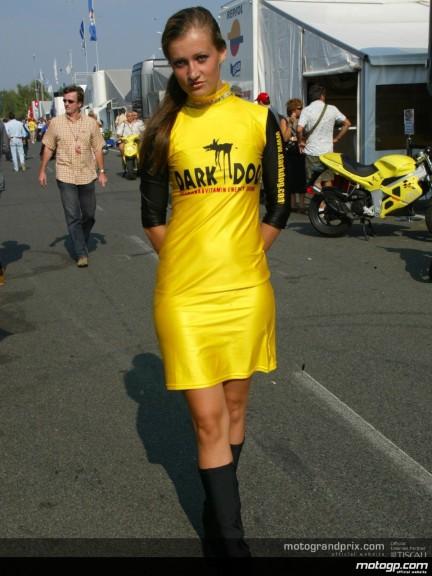 Brno Paddock Girls