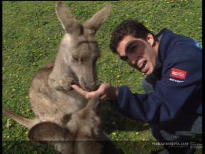 MotoGP riders go kangaroo crazy Down Under - Video