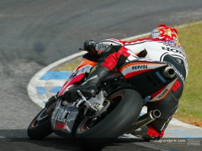 Hayden action 2
