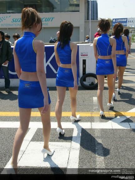Paddock Girls - Suzuka