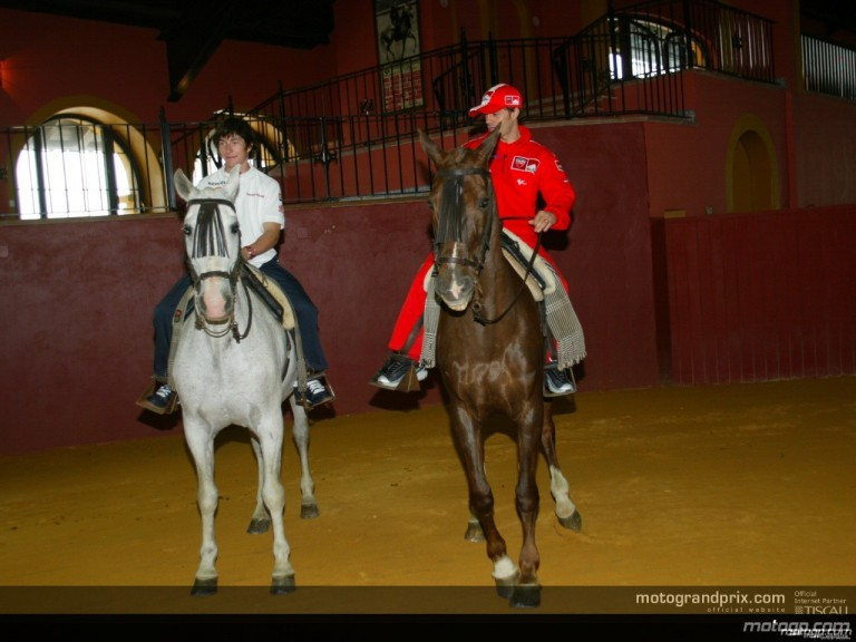 Horses and fighting bulls visit