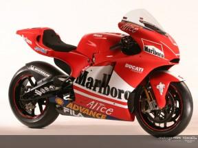 Ducati D16 GP4