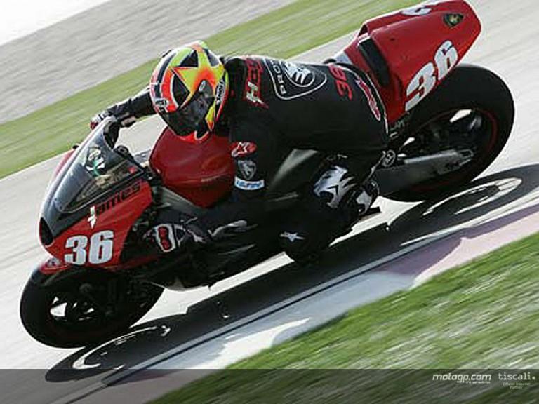 Haydon action Qatar