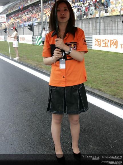 Paddock Girls - Shanghai