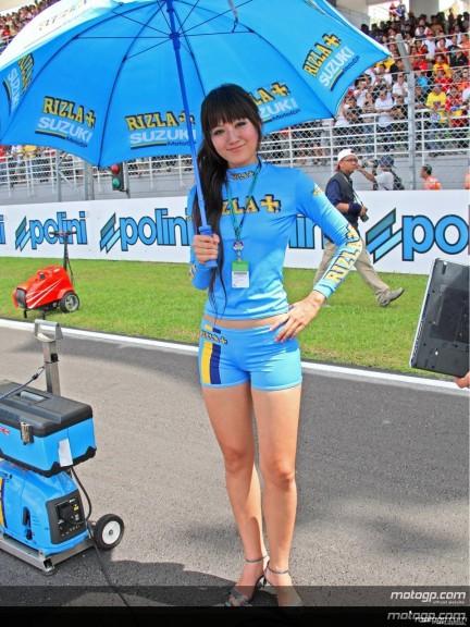 Paddock Girls - Sepang Circuit