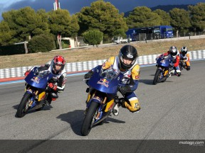 RED BULL ROOKIES 2008