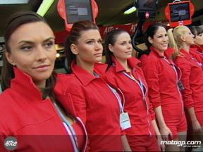 France paddock girls