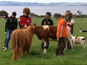 Riders enjoy Phillip Island countryside on the eve of the OZ GP