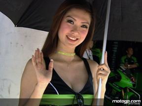 Paddock Girls in Malaysia