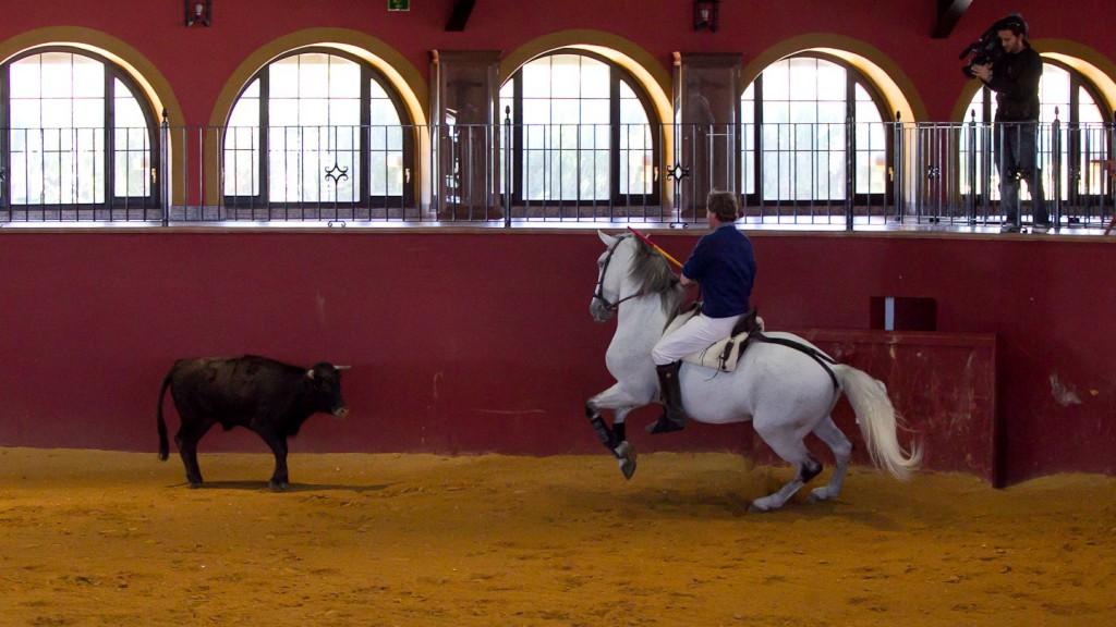 Fermin Bohorquez, Finca Fuente Rey, Jerez