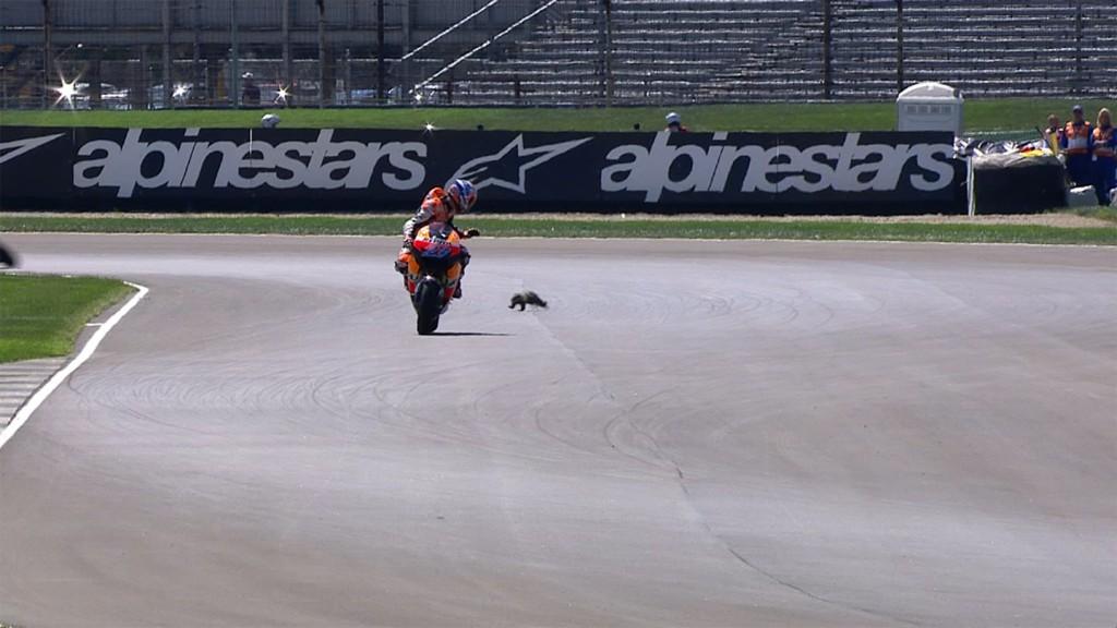 Casey Stoner, Repsol Honda, MotoGP FP2