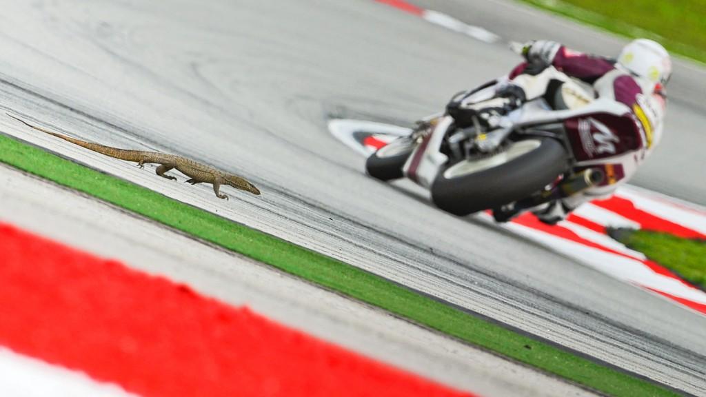 Moto2, Sepang FP2