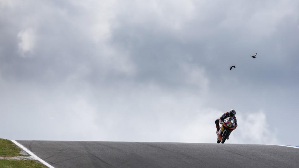 Sandro Cortese, Red Bull KTM AJo, Phillip Island FP2