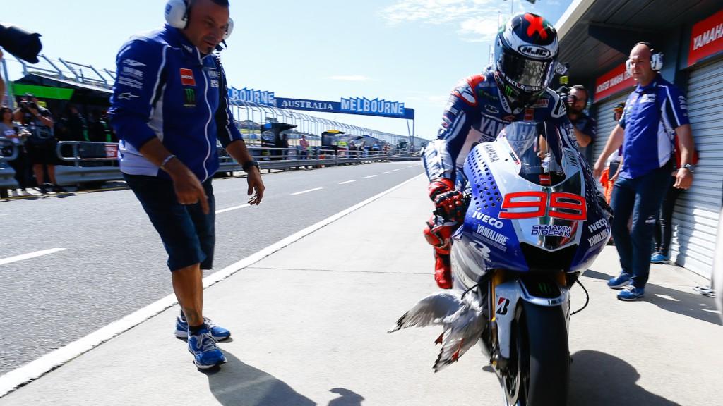 Jorge Lorenzo, Yamaha Factory Racing, Phillip Island Q2