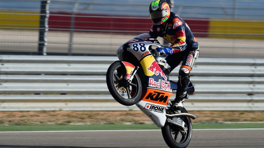 Jorge Martin, Red Bull MotoGP Rookies Cup