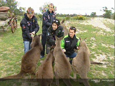 Riders go wild in Australia