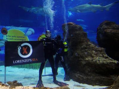 Lorenzo despide el año buceando entre tiburones