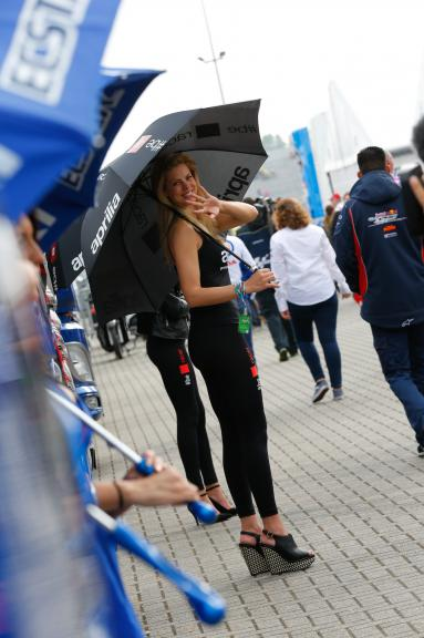 paddock Girl Motul TT Assen
