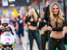 Paddock Girls Monster Energy Grand Prix de France