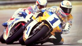 The combination of an Italian riding a Suzuki with Michelin tyres would emerge triumphant during the 1981 and 1982 500cc seasons.