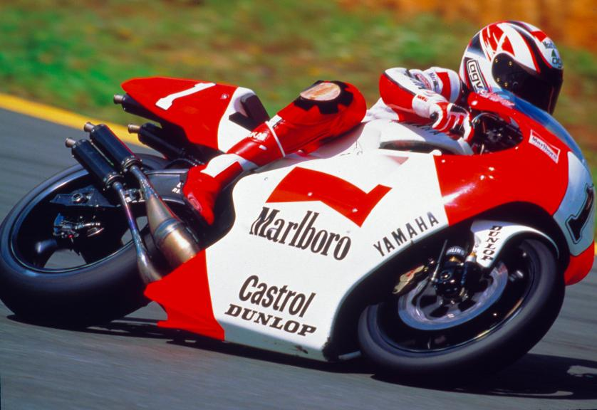 Wayne Rainey, 1993