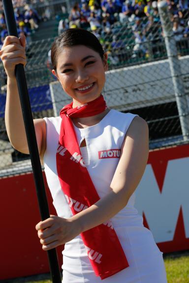 Paddock Girls, Motul Grand Prix of Japan