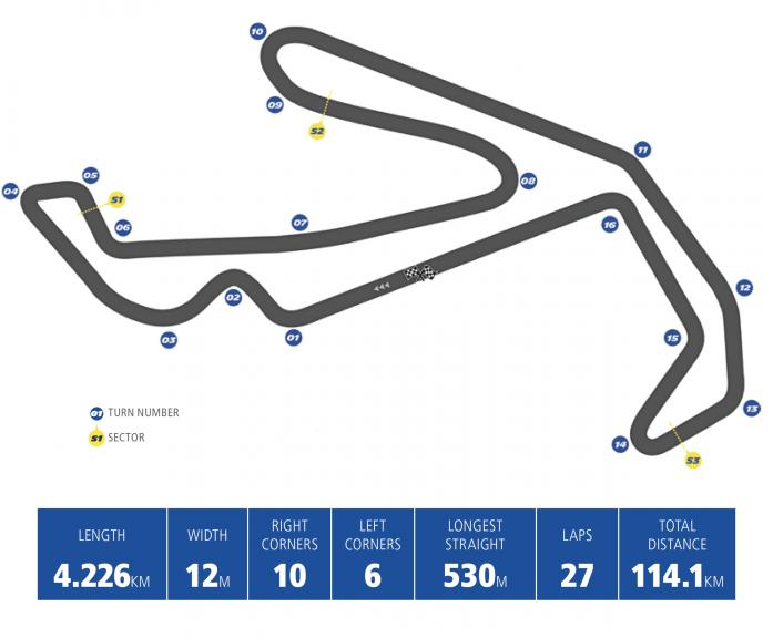 Michelin RSM Prev - en