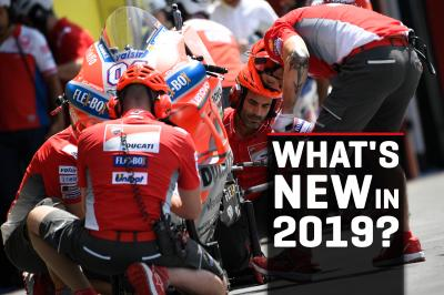 Bikes and teams: exciting changes for 2019