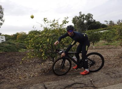 Lemon head… @ Rancho Santa Fe, California