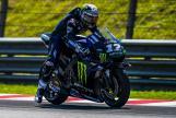 Maverick Vinales, Monster Energy Yamaha Motogp, MotoGP™ Sepang Winter Test