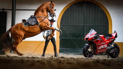 Horsepower in Jerez