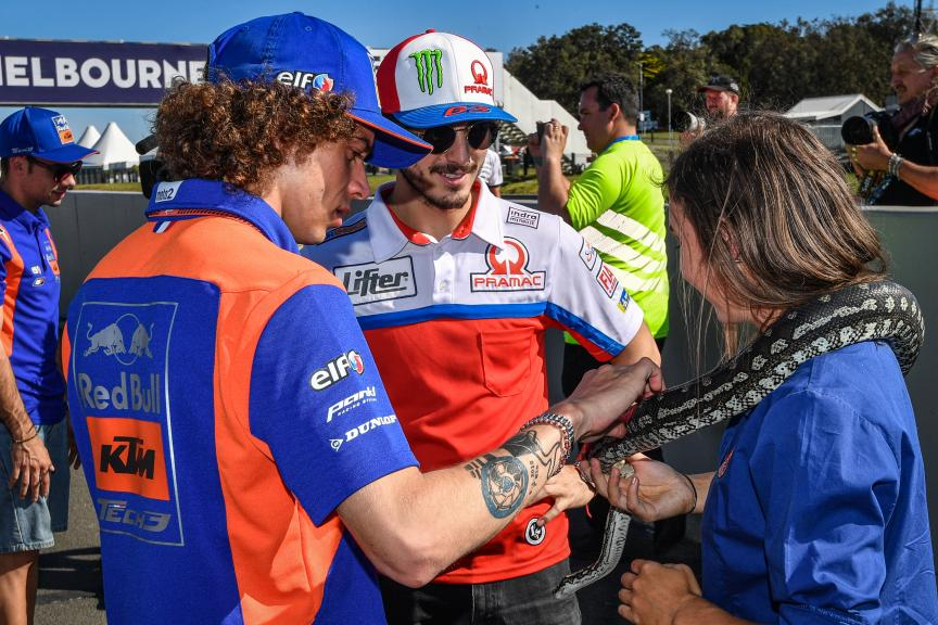 Off-Track, Pramac Generac Australian Motorcycle Grand Prix