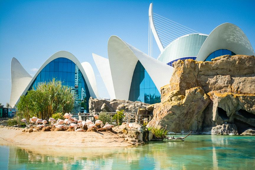 Destination Guide - Valencia