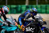 Luca Marini, Sky VR46 Avintia, Motul TT Assen